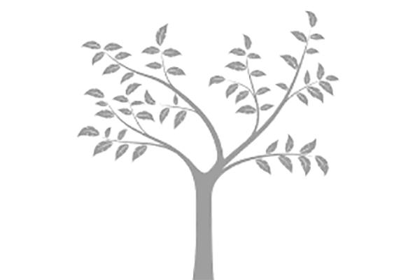 tree-4 600x400